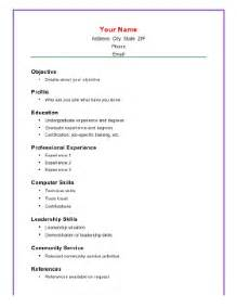 Computer Skills Resume Exle by Basic Academic Resume A4 Template