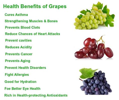 fruit health benefits interesting facts about health benefits of fruits idolbin