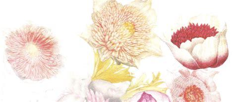 fiori di bacco conferenze quot fiori e giardini a firenze quot