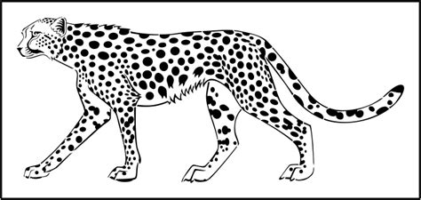 cheetah template cheetah template pictures to pin on pinsdaddy