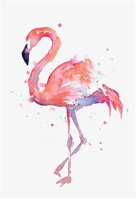 canva querformat dibujo de flamencos flamingos acuarela animal png image