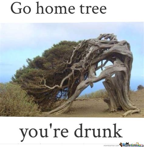 Go Home You Re Drunk Memes - go home tree you re drunk by whitetrash101 meme center
