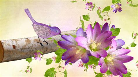 wallpaper flower bird hd purple birds flowers wallpaper ussharing pinterest