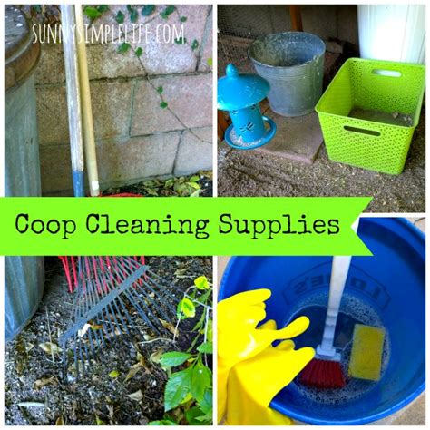 how to clean a chicken coop countryside network
