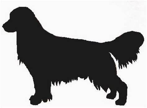 golden retriever logo animal zone labrador retriever facts and features