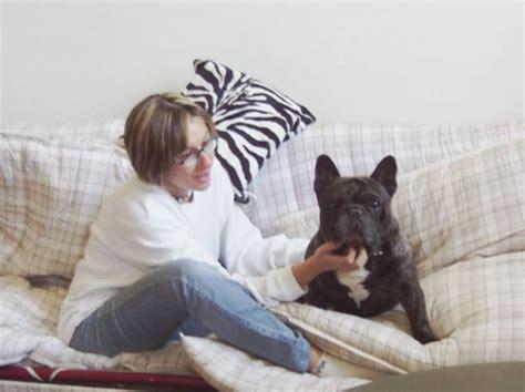boxer alimentazione boxer francese cani taglia media caratteristiche