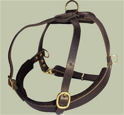 rottweiler pulling competition rottweiler padded pulling harness buy tracking harness for rottweiler