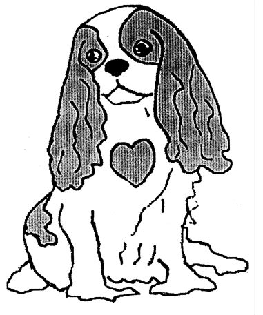 coloring pages of cavalier king charles spaniels mitral valve disease and the cavalier king charles spaniel