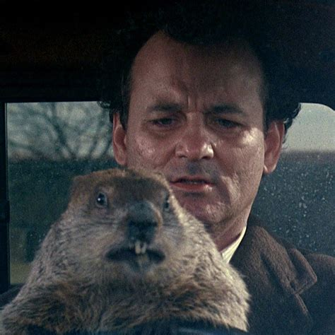 groundhog day will come groundhog day musical actually happening in 2017 vulture