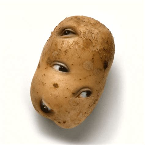 funny hot potato gif new trending gif on giphy lol wtf weird eyes potato