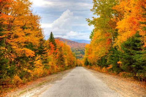 fall colors in maine maine fall foliage photos etravelmaine