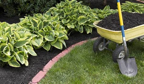 how to prepare a flower bed make your garden bed zionsville in altum s