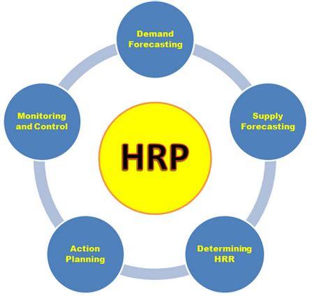 human resource planning process flowchart human resource planning process certified human