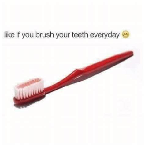 Toothbrush Meme - 25 best memes about brush your teeth brush your teeth memes