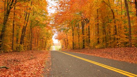 michigan fall colors best roads peak dates to see fall colors as autumn takes