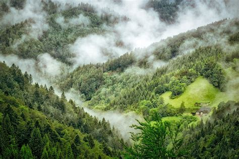 the black forest germany black forest new7wonders of nature