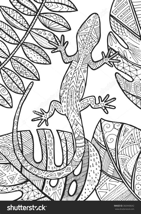 lizard coloring pages for adults 1003 best printable coloring printable pages and how to