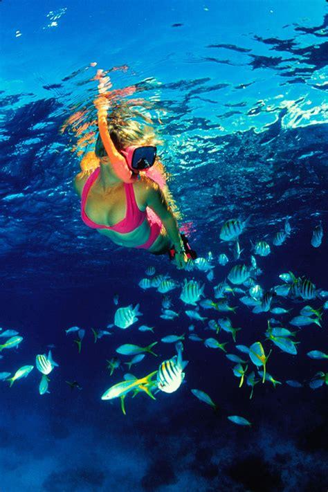 glass bottom boat kauai honeymoon wishes honeymoon registry where your wedding