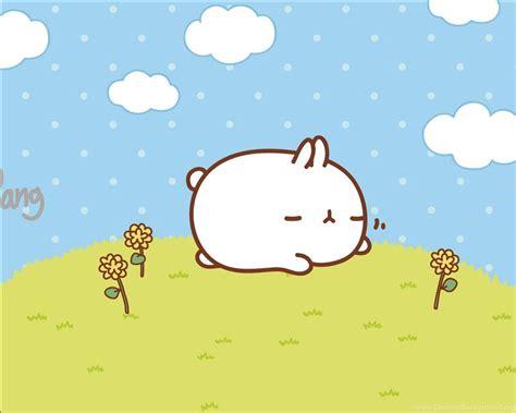 gratis kartun lucu kelinci wallpapergratis
