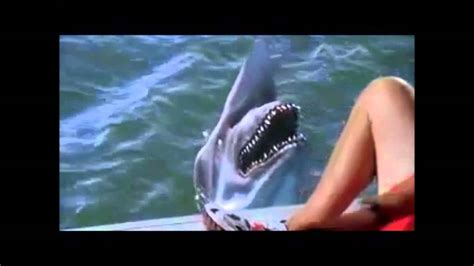 malibu shark attack decades of horror malibu shark attack sharks
