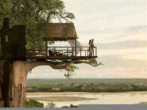 treehouse vacations tree house vacation various interests