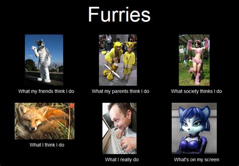 Furry Meme - furries what people think i do by loyboys on deviantart