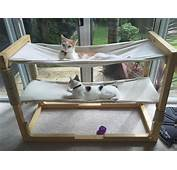 Build Bunk Bed Hammocks For Your Cats  Make