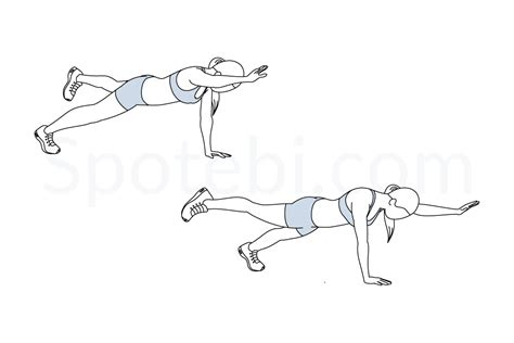 bird dogs workout plank bird illustrated exercise guide