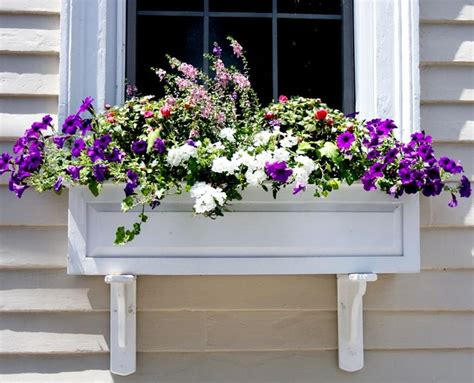 easy window boxes 17 best images about curb appeal ideas and tips on