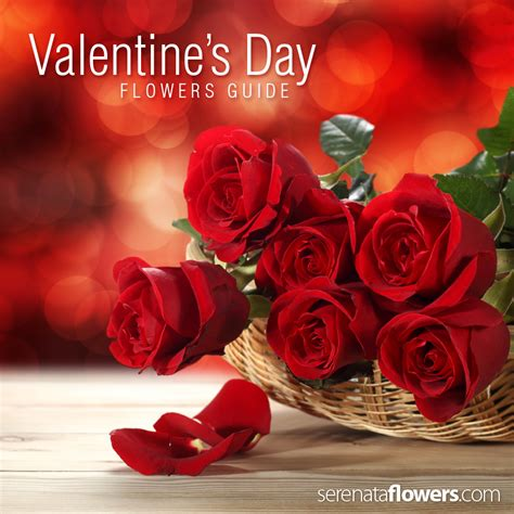 pictures of valentines day flowers s day flowers guide pollennation