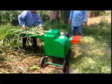 Mesin Cacah Rumput Pakan Ternak rumput gajah buzzpls