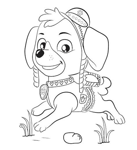 paw patrol sky coloring pages