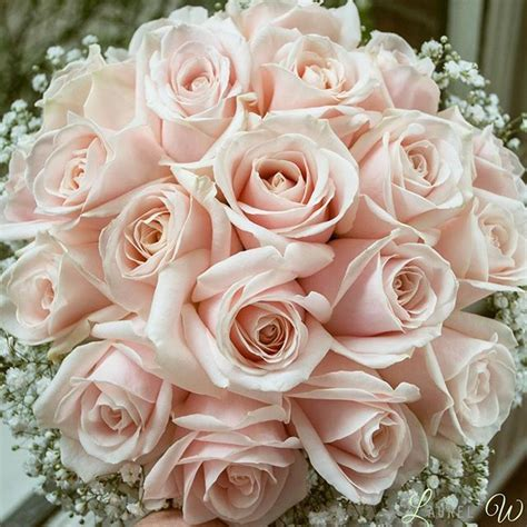blush pink wedding flowers search blush pink wedding flowers blush pink wedding
