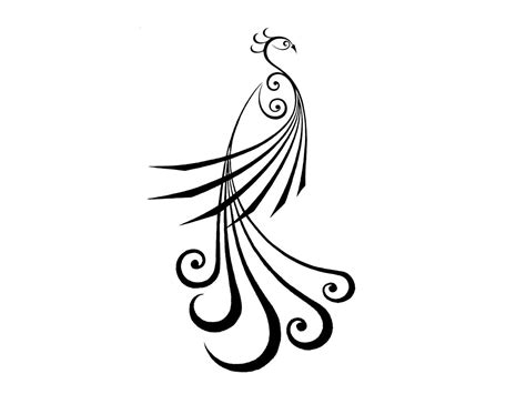easy tattoo of peacock feather peacock simple lines tattoo clipart panda free clipart