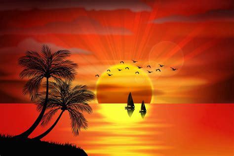 vector sunset sea paradise tropical island palms