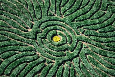 Chatfield Botanic Gardens Corn Maze Denver Image Gallery Lonely Planet