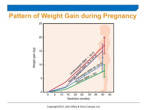 pattern weights canada chapter 14 nutrition during pregnancy and lactation ppt