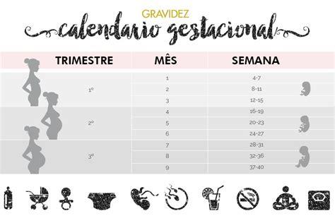 Calendã Gestacional Semanas X Meses Calend 225 Gestacional Como Calcular Semanas Meses E