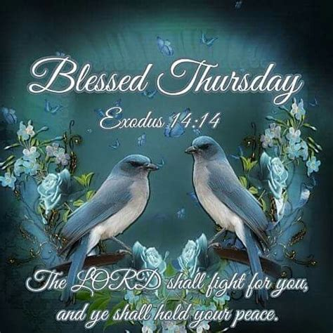 blessed thursday pictures   images  facebook