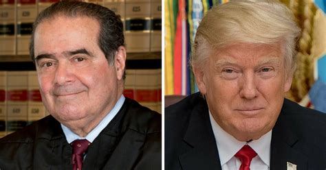 nino and me my friendship with justice antonin scalia books new book reveals what justice scalia loved about