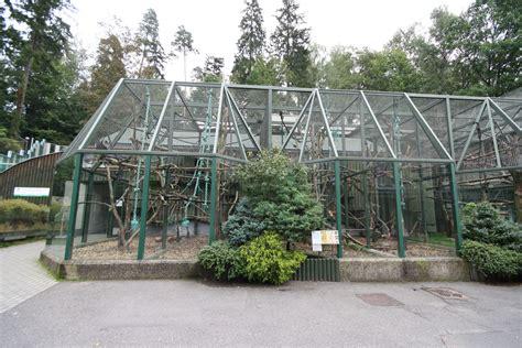 bird aviary plans indoor how to build