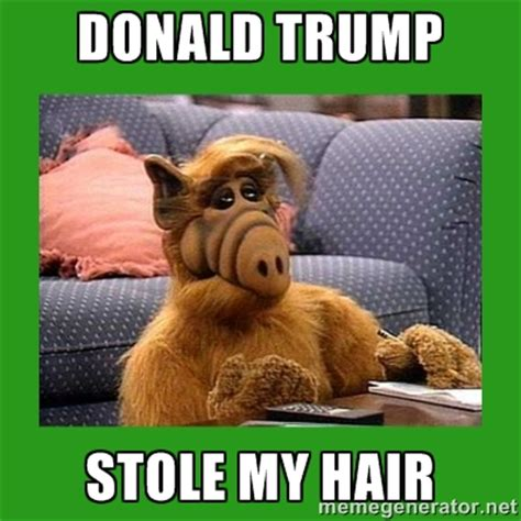 Alf Meme - election 2016 the media can put anyone in the white house