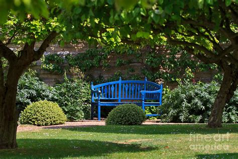 blue outdoor bench blue bench by the garden wall photograph by louise heusinkveld