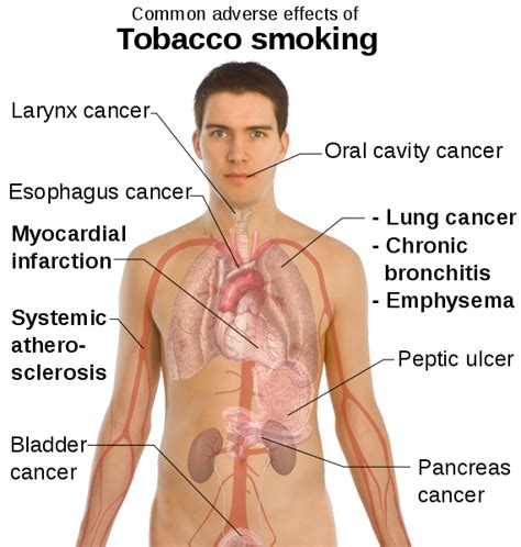 information world history and health effects of smoking tobacco