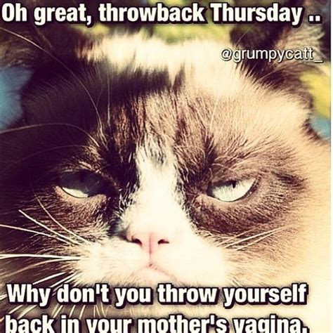 throw back thursday s day 1426 best images about grumpy cat on