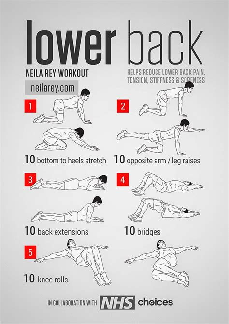Workout Routines 187 Health And Fitness Training | back workouts 187 health and fitness training