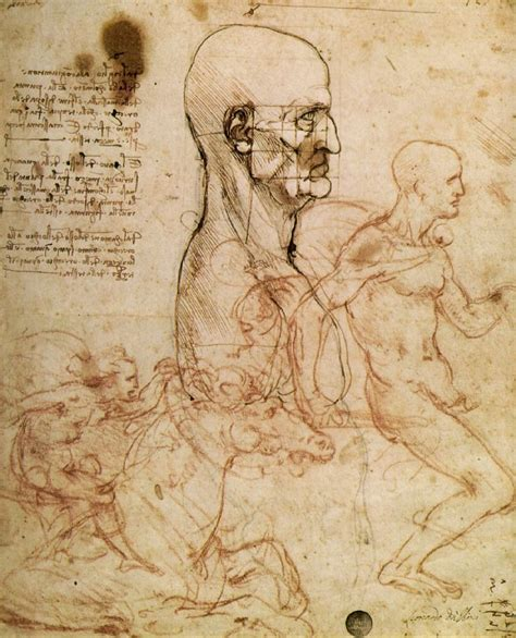 Sketches Leonardo Da Vinci by Sketchbooks