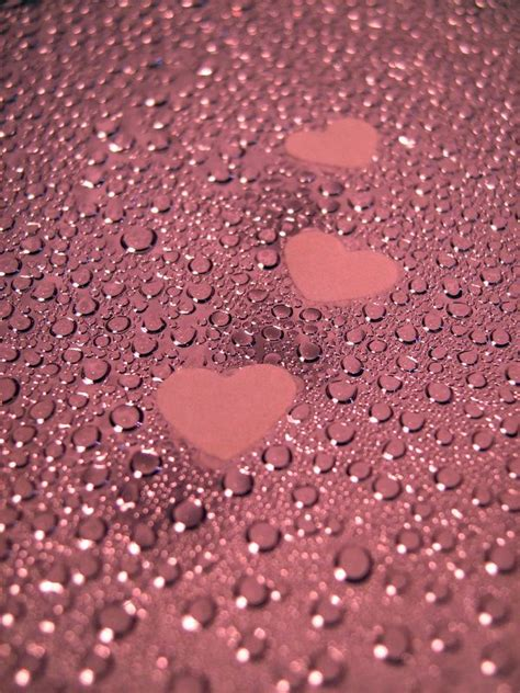 Wallpaper Rain Pink | three pink hearts on wet pink counter top iphone