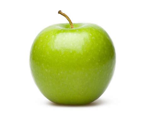 apple fruit apple fruit clipart best