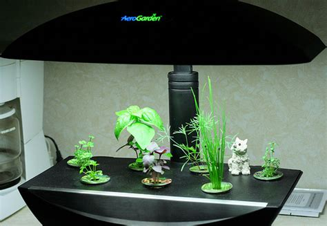 Hydroponic Garden Kit by Hydroponics Kit New Gardening Concepts From